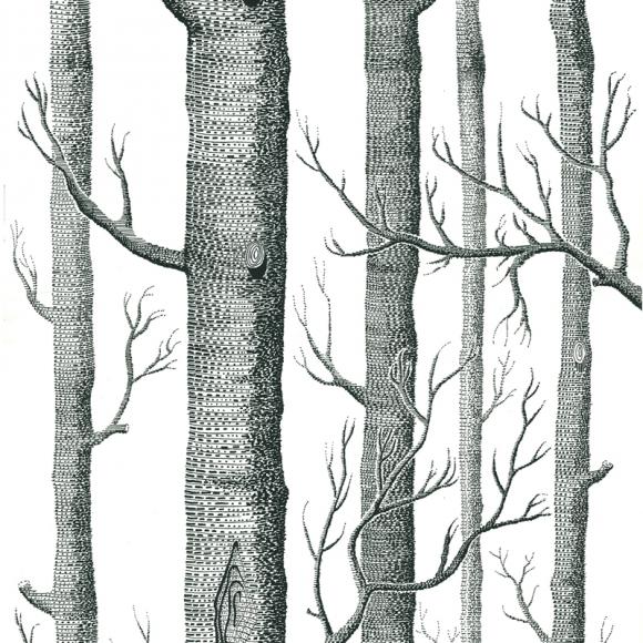 woods-69-12147